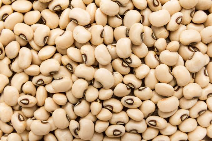 """GM Crops: """"Nigeria in perfect position to lead Africa's biotech revolution"""" – Cowpea Farmer/Expert"""