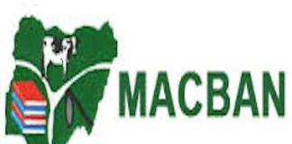 Miyetti-Allah Cattle Breeders Association of Nigeria (MACBAN) Archives |  AgroNigeria